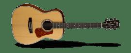 Cort L100 C Natural Satin Acoustic Guitar